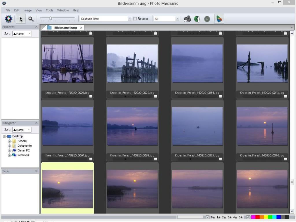 So sieht die Bildübersicht ohne Filter aus. Einige Bilder sind schon mit einem Stern markiert.